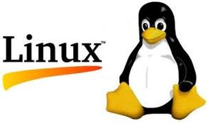 """AFLCF-10-LX-LNX 10"""" Panel PC OS Image with Linux, Kernel version 2.6.26, For AFL-LX Series, 2GB CF card"""
